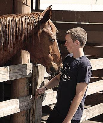 boys home and ranch with equine therapy